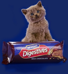 digestives_chocolate_top_image